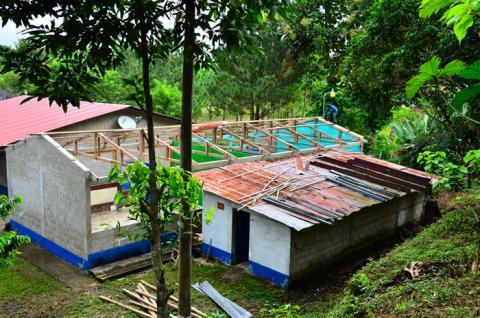 Visibile, nelle aule, la vecchia struttura in legno.
